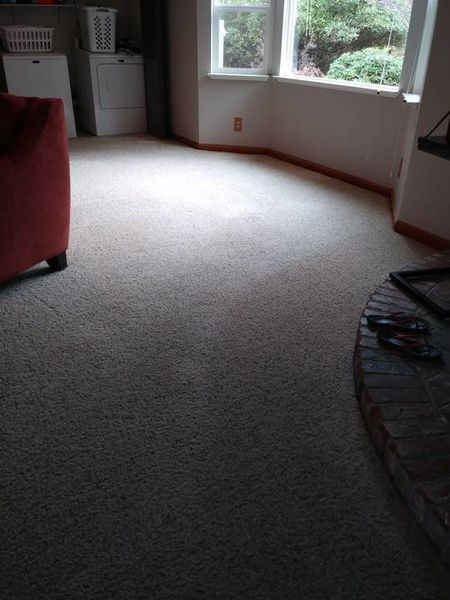 Carpet Cleaning in Auburn, CA (1)