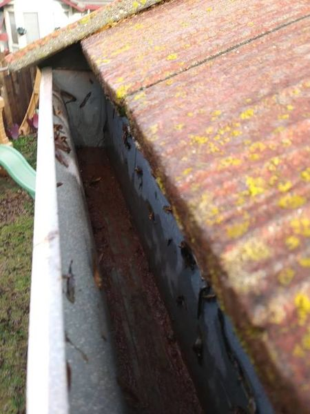 Gutter Cleaning in Rocklin, CA (1)