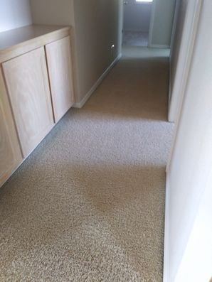 Carpet Cleaning in Placerville, CA (1)