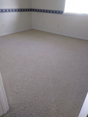 Carpet Cleaning in Placerville, CA (2)
