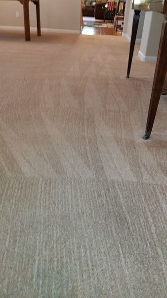Carpet Cleaning in Pilot Hill, CA (1)