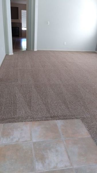 Carpet Cleaning in Rocklin, CA (1)