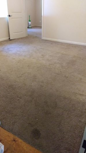 Before & After Carpet Cleaning in Foresthill, CA (1)