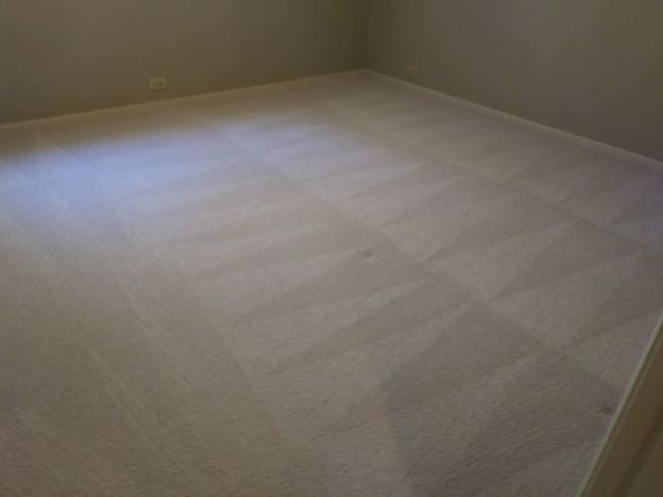 Carpet Cleaning in Cool, CA (1)