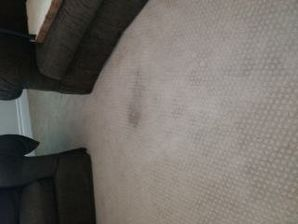 Before & After Carpet Cleaning in Rocklin, CA (1)