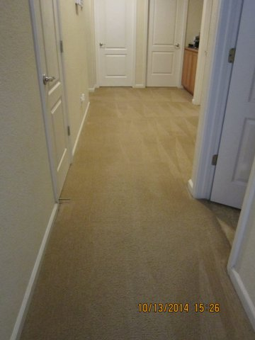 Carpet cleaning by My Dad's Cleaning Service