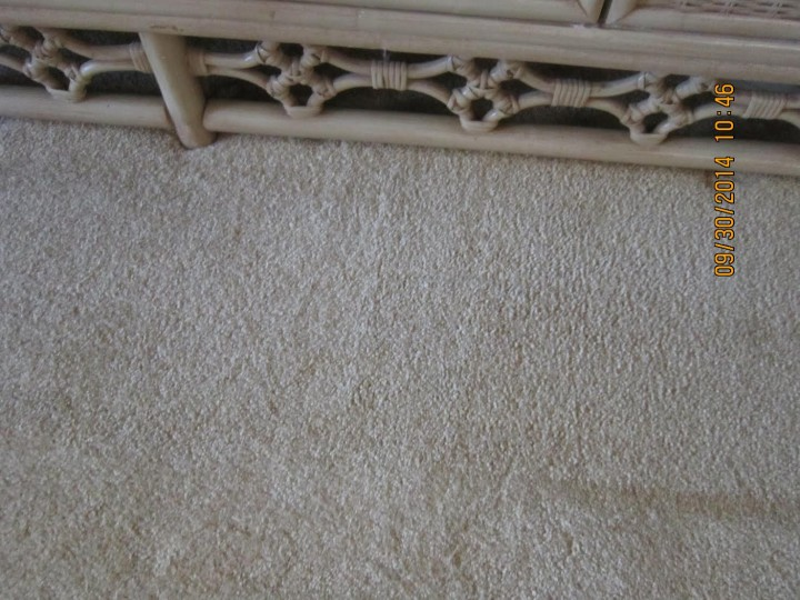After Carpet Stain Removal