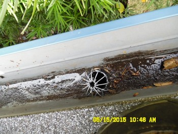 Gutter Cleaning in Rocklin, CA